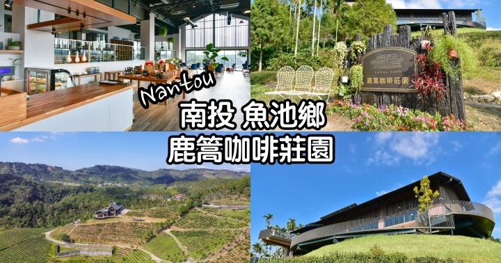 【南投景點】鹿篙咖啡莊園-俯瞰絕美山林的景觀咖啡廳|新IG打卡景點|近日月潭|魚池鄉|